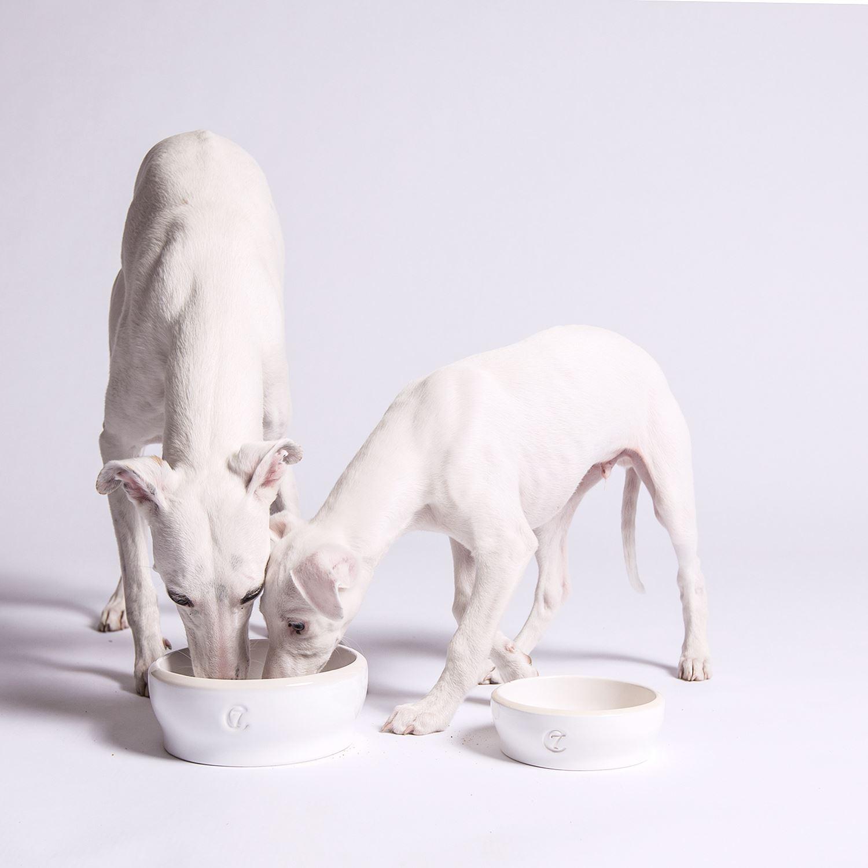 DOG BOWL JAMIE - WHITE