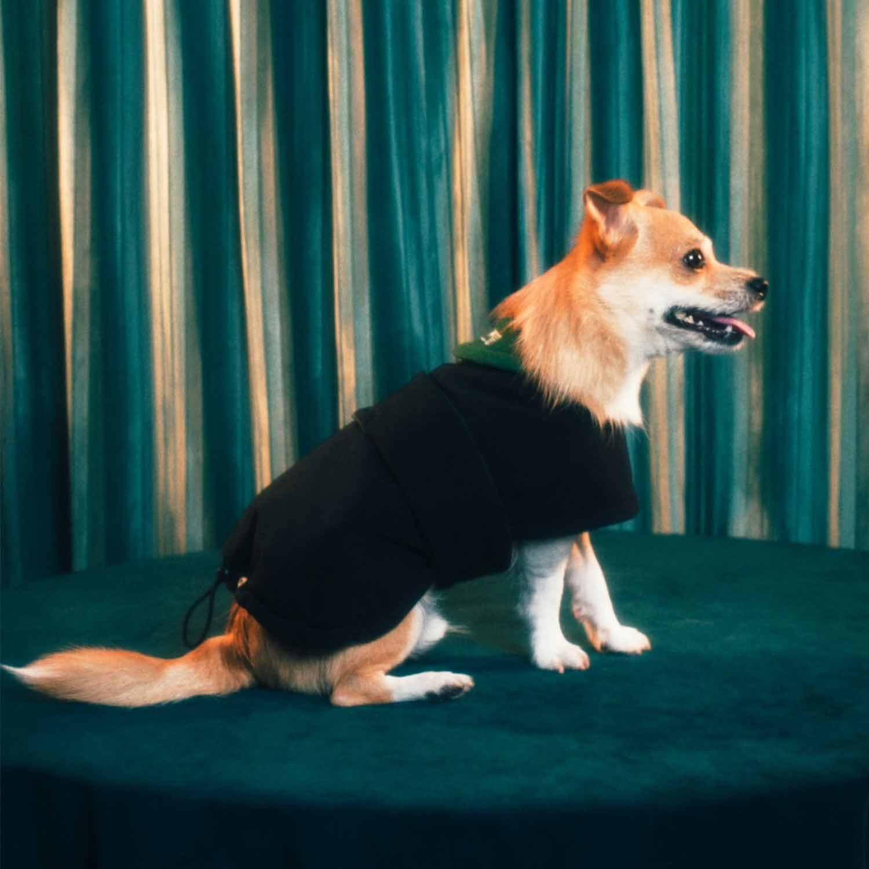 FUTON DOG COAT - PINK