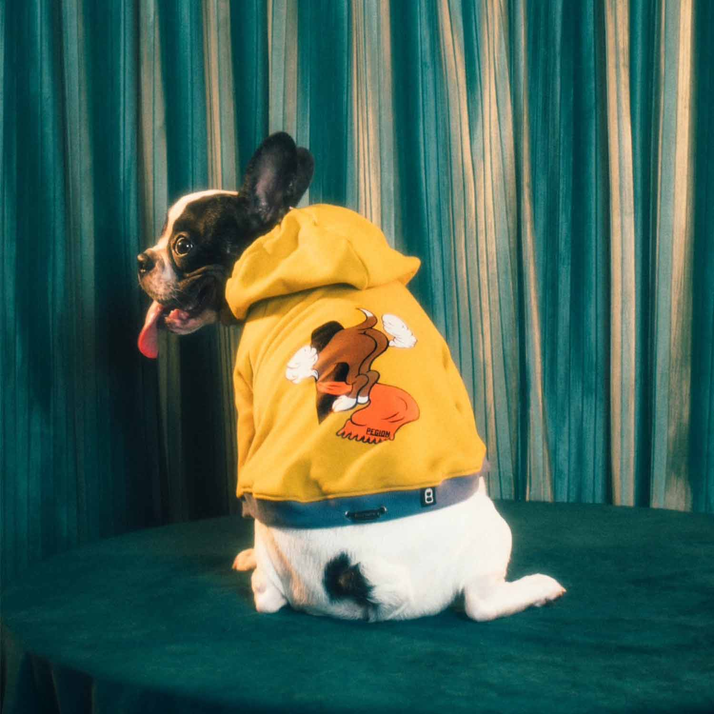 MY BASE DOG PARKA for dog - GREY