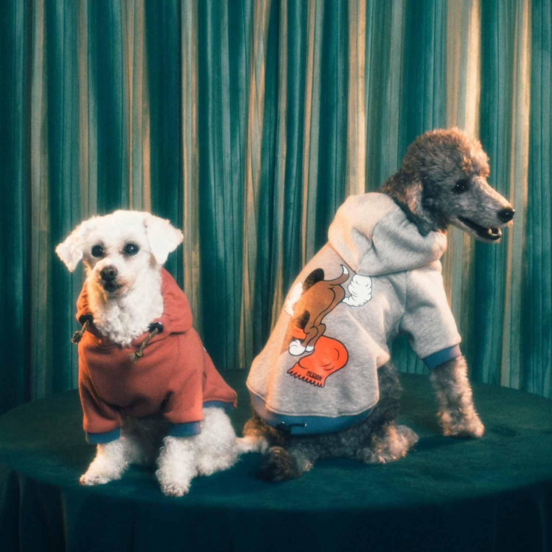 MY BASE DOG PARKA for dog - YELLOW