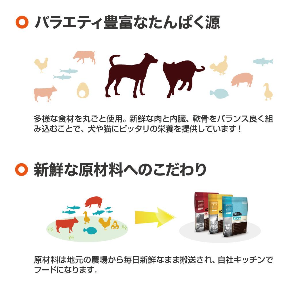 アカナ ヘリテージ パピースモールブリード 2kg (犬・ドッグ)[正規品] <br>ドッグフード ドライ 犬 えさ 犬のえさ 犬の餌 犬餌 2kg パピースモールブリード パピー 子犬 子いぬ 小型犬 小型 小さい 小粒 チワワ トイプードル 健康 成長 サポート