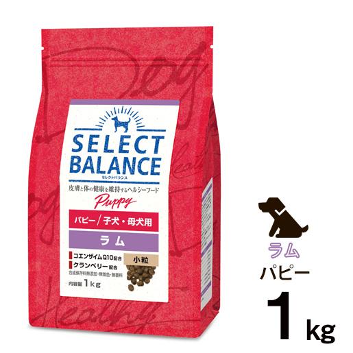[正規品]セレクトバランス パピー ラム 小粒 子犬・母犬用 1kg