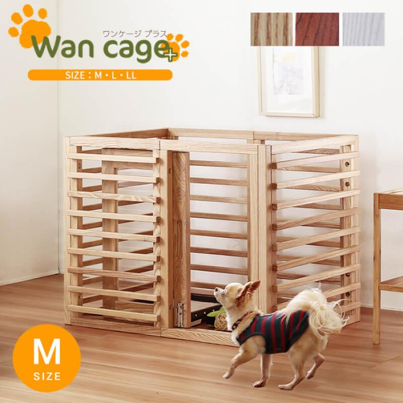Wancage+ M