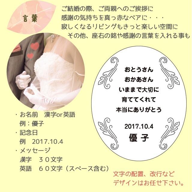 【送料無料】 ビッグTB 祝ベア【身長80cm】  特大テディべア