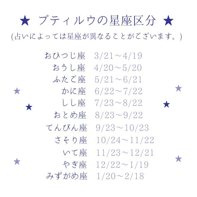 【メール便対象商品】  さそり座Tシャツ  ( MeiMei365 9cmコスチューム )