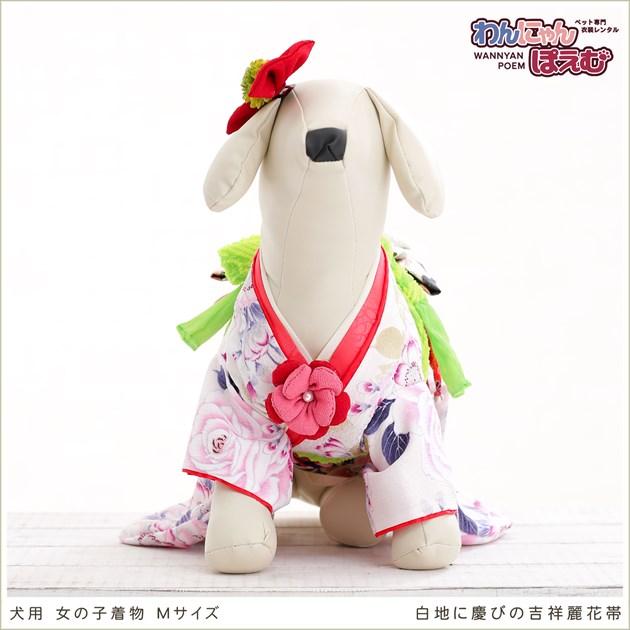 犬 ペット 着物レンタル 女の子 わんこ 小型犬 kmr-003 ペット衣装 犬の着物 動物衣装 七五三 結婚式 高級生地 かわいい フォトブック 動画 プレゼント「白地に慶びの吉祥麗花帯」