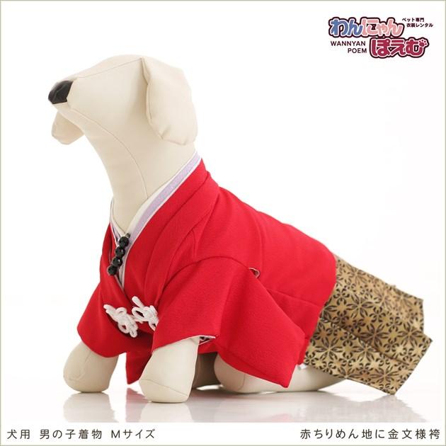 ペット着物レンタル 小型犬 男の子 dm-004 ペット衣装 Mサイズ 犬の着物 わんこ 高級生地 かわいい 結婚式 七五三 年賀状 撮影会 かっこいい 「赤ちりめん地に金文様袴」