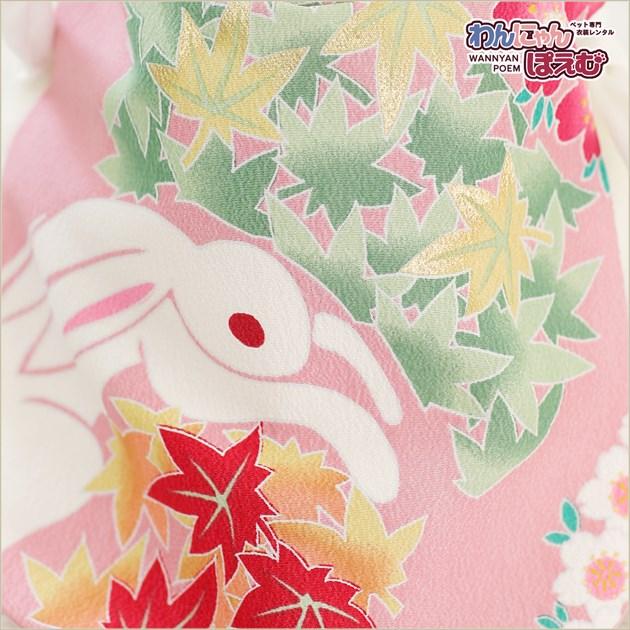 うさぎ着物レンタル ペット衣装 女の子 uk-002 兎の着物 七五三 年賀状 撮影会 往復送料無料 高級生地 かわいい ドワーフ「ピンクにラビット四季の花」
