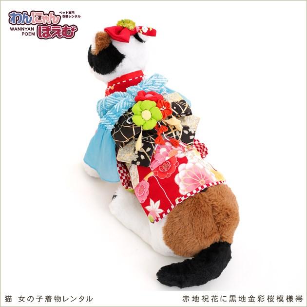 ねこ ペット 着物レンタル 女の子 ckssr-003 ペット衣装 猫の着物 cat 七五三 結婚式 高級生地 かわいい おしゃれ フォトブックと動画プレゼント 「赤地祝花に黒地金彩桜模様帯」