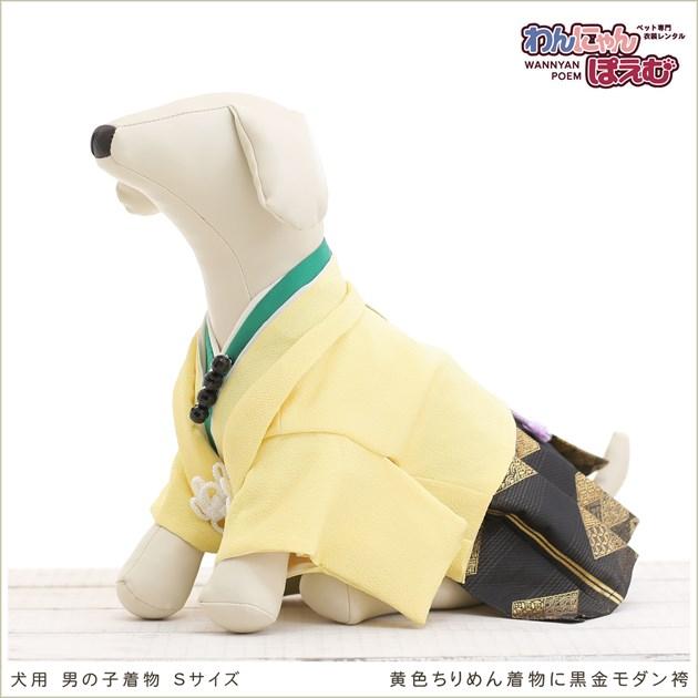 犬の着物レンタル 小型犬 男の子 ds-009 ペット衣装 Sサイズ 犬の着物 わんこ 高級生地 かわいい 結婚式 七五三 年賀状 撮影会 かっこいい 「黄色ちりめん着物に黒金モダン袴」