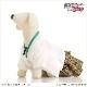 ペット着物レンタル 小型犬 男の子 dm-005 ペット衣装 Mサイズ 犬の着物 わんこ 高級生地 かわいい 結婚式 七五三 年賀状 撮影会 かっこいい 「白ちりめん地に銀ゼブラ袴」