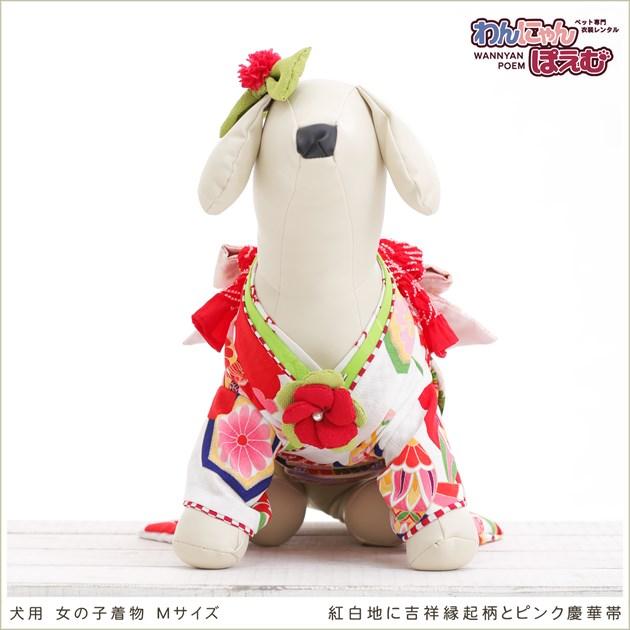 犬 ペット 着物レンタル 女の子 わんこ 小型犬 kmr-009 ペット衣装 犬の着物 動物衣装 七五三 結婚式 高級生地 かわいい フォトブック 動画 プレゼント「紅白地に吉祥縁起柄とピンク慶華帯」