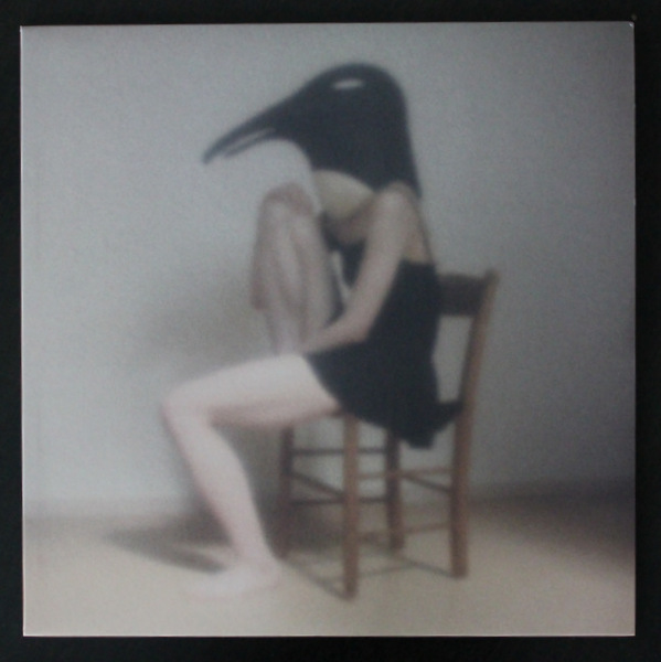 V.A. - PENGUIN CAFE ORCHESTRA - tribute