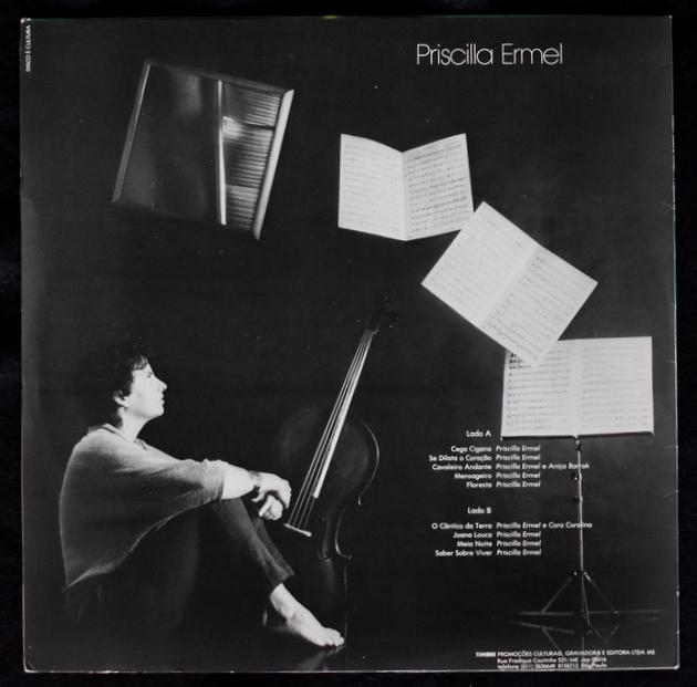 Priscilla Ermel - Saber Sobre Viver