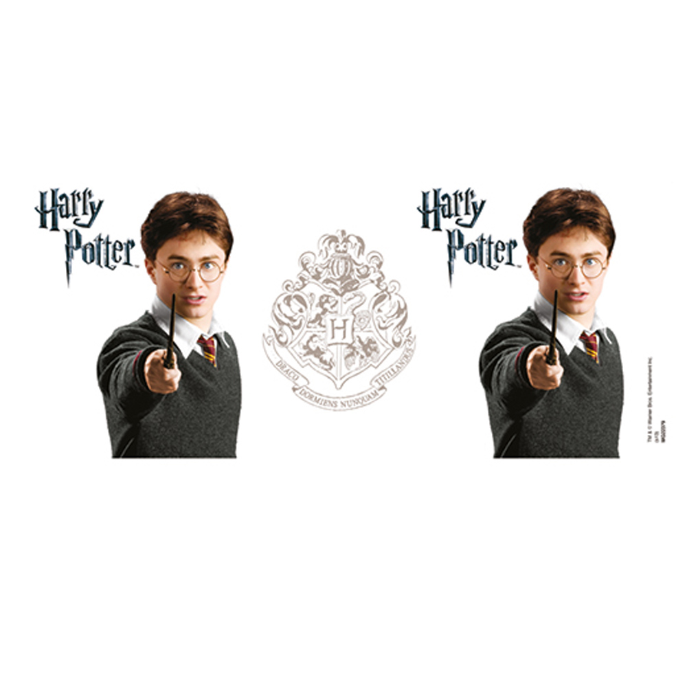 HARRY POTTER ハリーポッター (映画公開20周年 ) - Harry / マグカップ