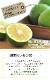 熊本県産 スキッとレモン 1kg 【特別栽培】【国産レモン】【マイヤーレモン】