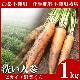 無農薬にんじん 1kg 【訳あり】 【無農薬栽培】 【にんじんジュース】