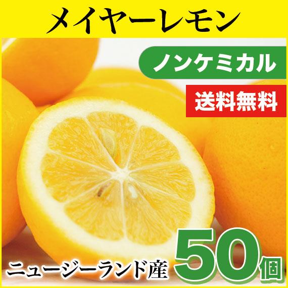 【送料無料】フルーツのような香り! ニュージーランド産 メイヤーレモン50個箱【業務用】 ノンケミカル