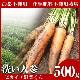 無農薬にんじん 500g 【訳あり】 【無農薬栽培】 【にんじんジュース】