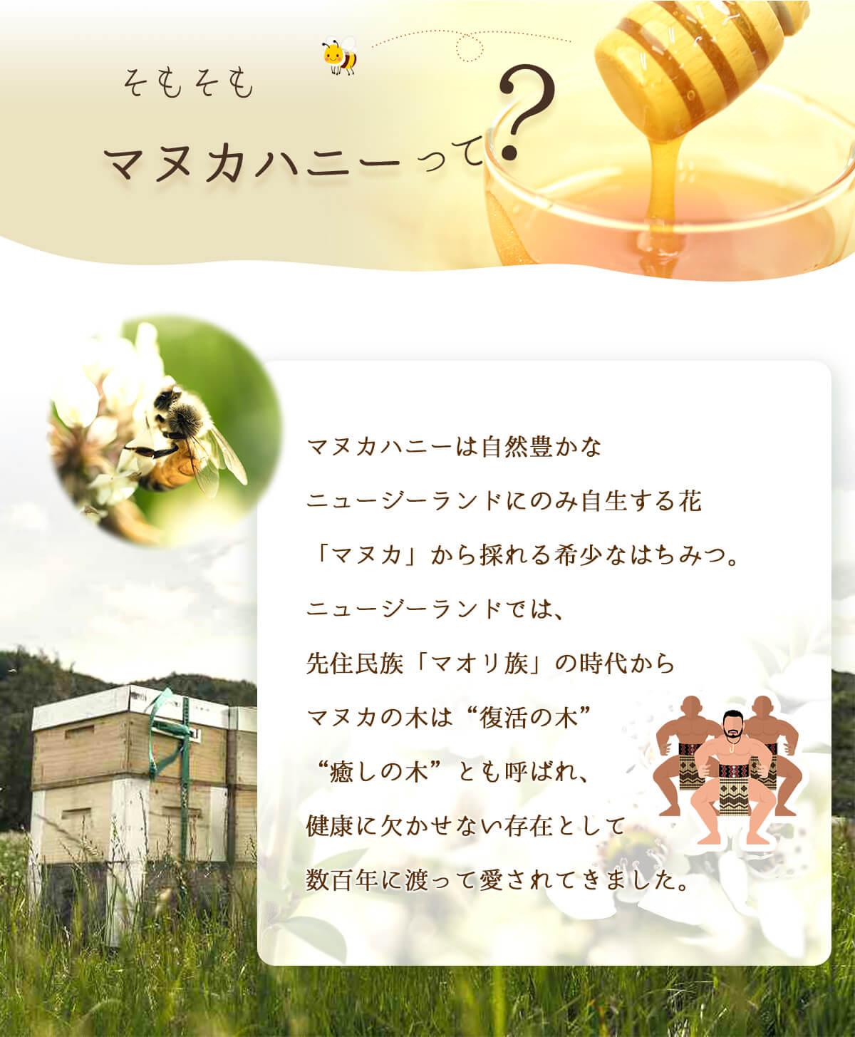 マヌカハニーUMF10+ 携帯用 2種類:スナップ(5g)、サシェット(10g)  ネコポス便 送料無料 ニュージーランド はちみつ 蜂蜜 ハチミツ マヌカ