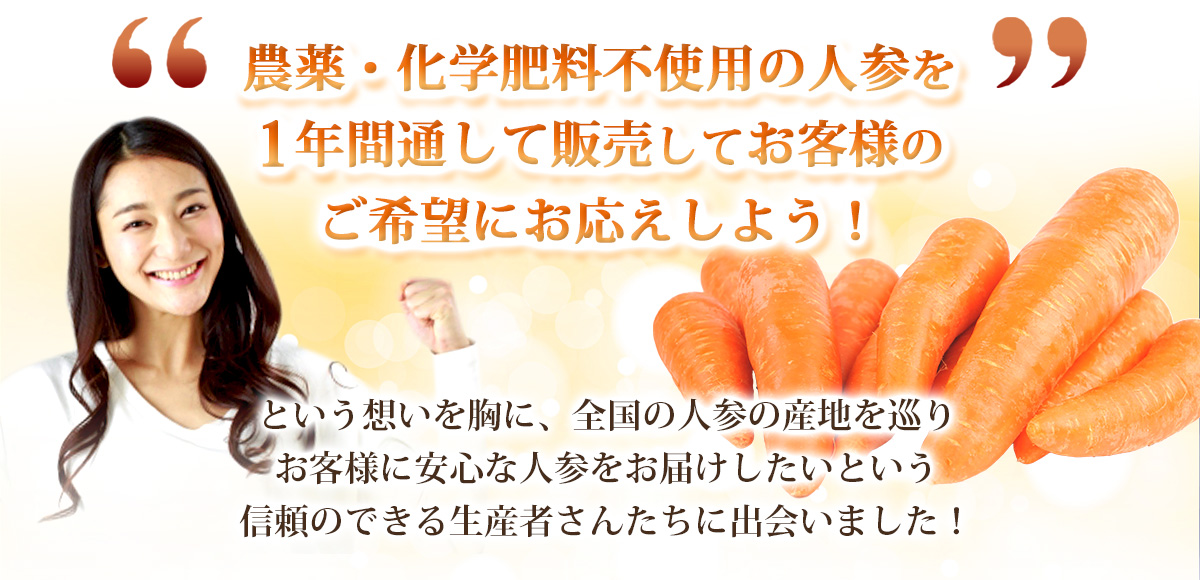 無農薬にんじん 9kg 【送料無料】 【訳あり】 【無農薬栽培】 【にんじんジュース】