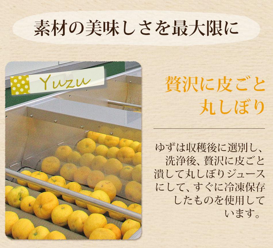 皮ごとゆずde人参ジュース 1箱(100cc×30パック) 【冷凍ジュース】【にんじんジュース】【送料無料】
