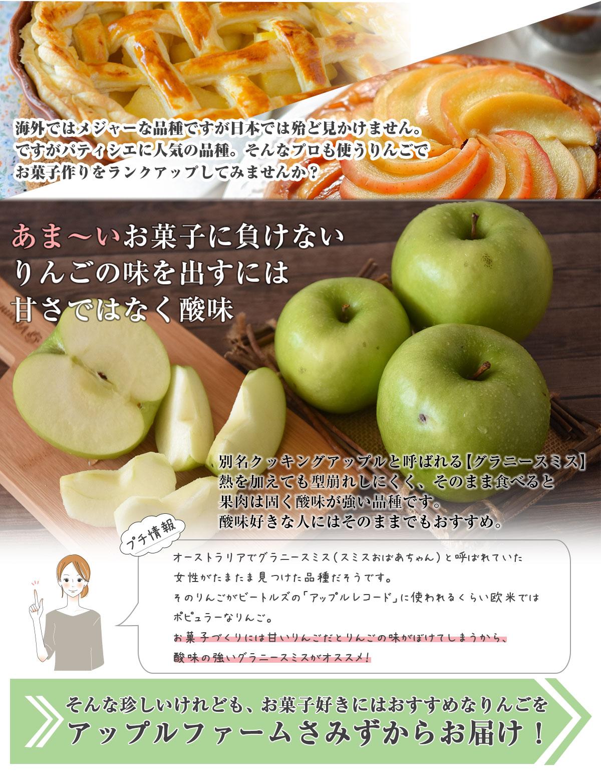 長野県産 りんご グラニースミス 5kg 特別栽培農産物 訳あり