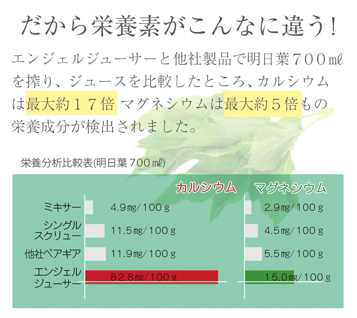エンジェルジューサー 1台【AG7500】【送料無料】【スロージューサー】【ANGEL】【低速ジューサー】