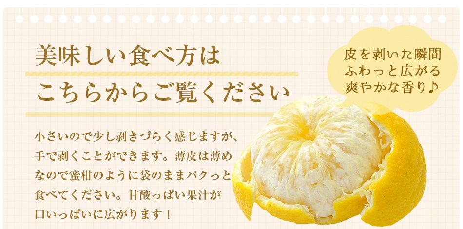 黄金柑(おうごんかん)3kg 【送料無料】 【静岡県産】 【特別栽培農産物】