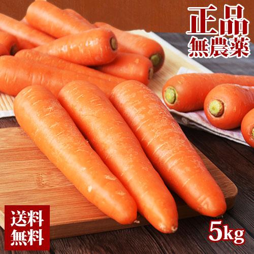 正品 無農薬人参5kg 農薬・化学肥料不使用栽培 人参ジュース にんじんジュース
