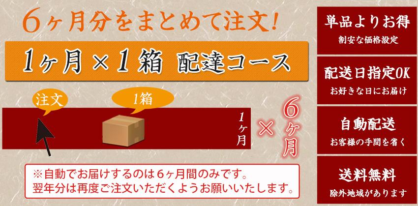 【定期】 とくべつなにんじんジュース 【6ヶ月間1ヶ月1箱コース】【送料無料】【冷凍ジュース】