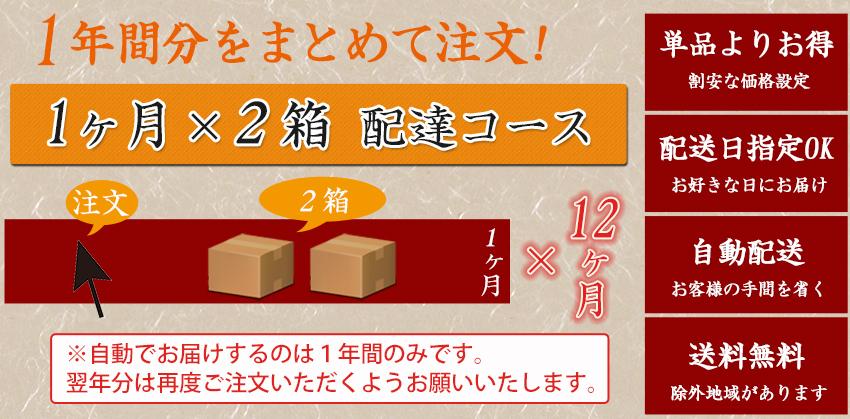 【定期】 とくべつなにんじんジュース 【12ヶ月間1ヶ月2箱コース】【送料無料】【冷凍ジュース】