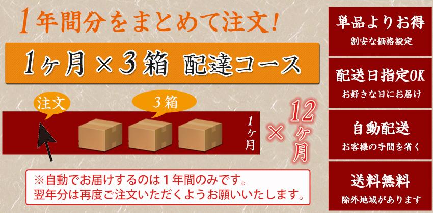 【定期】 とくべつなにんじんジュース 【12ヶ月間1ヶ月3箱コース】【送料無料】【冷凍ジュース】