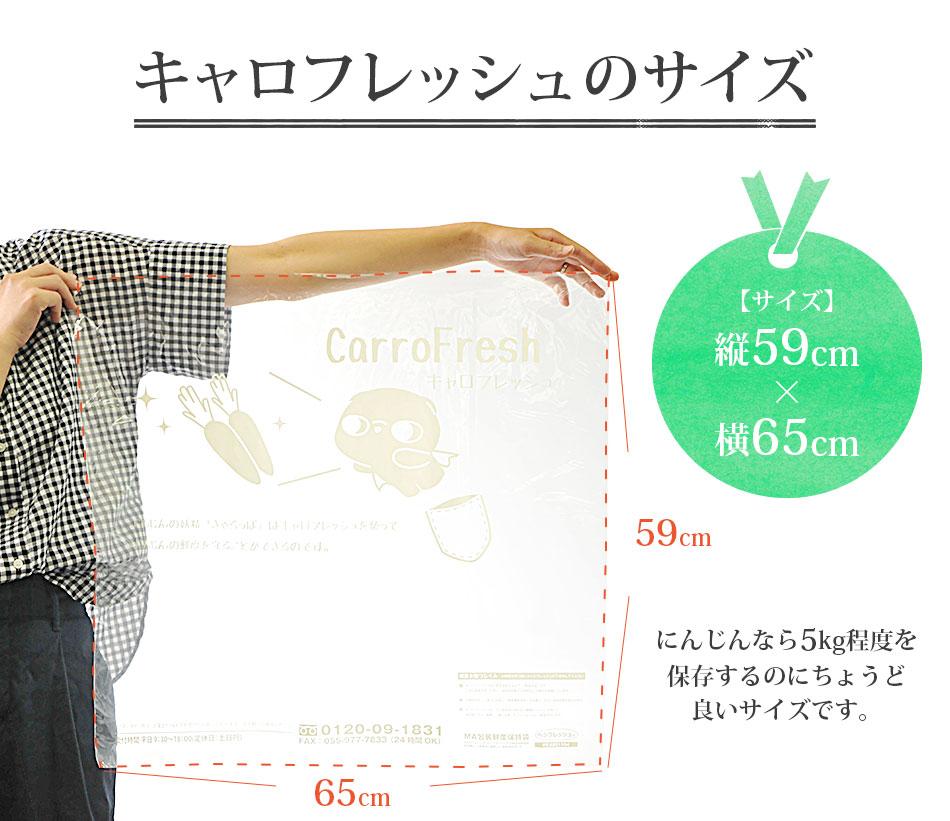 鮮度保持袋 キャロフレッシュ (590mm×650mm) 1枚 【メール便対応】