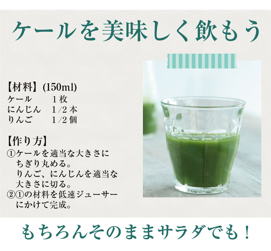 新鮮な無農薬ケール 2kg【国産】【生葉】【青汁】