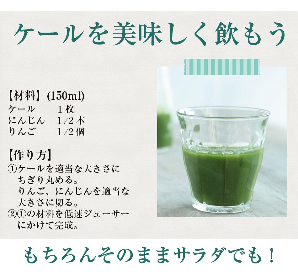 新鮮な無農薬ケール3kg 【国産】【生葉】【青汁】
