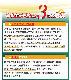 【即納】防災テントセット unusual-アンユージュアル- 一人用テント 1張/防災用アルミシェラフ 1個/非常用簡易トイレ 3セット/エアーベッド 1個