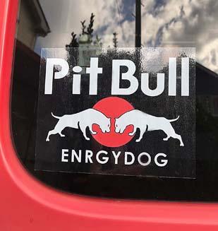 Pitbull enrgydog Sticker ホワイト【PMS00126】
