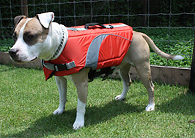 Canine Lifejacket 【PMK00006】
