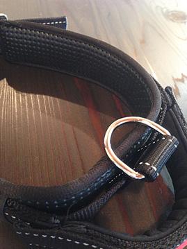 伸縮ハンドル付きPremium Collar 【PMC00057】