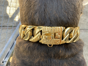 RUGGED CHAINS COLLAR GOLD 【PMC00085】送料無料!