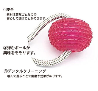 Molar Bite Toy 【PME00041】