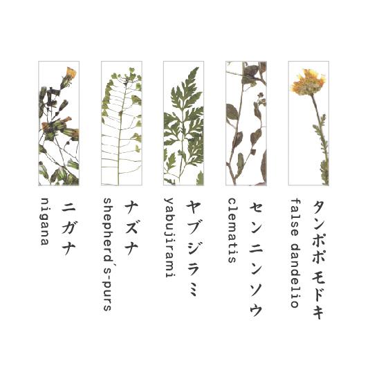 hashioki 5個セット / 押花 [toumei]