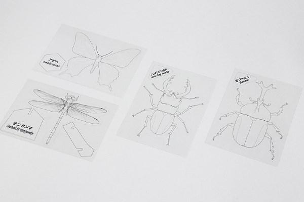 プラバン昆虫図鑑
