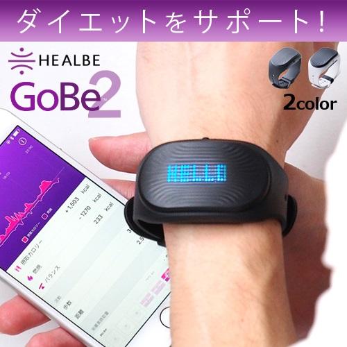 ゴービー HEALBE GoBe2
