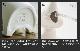 ブルーノ ムーミン パーソナル気化式加湿器 BRUNO MOOMIN PERSONAL HUMIDIFIER BDE032