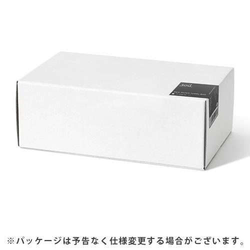 ペーパータオルボックス soil GEM PAPER TOWEL BOX