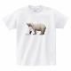 有栖様×ぽっぷこーんミュージアム限定のTシャツ