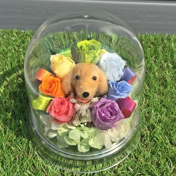 犬用お供え・ドーム虹花