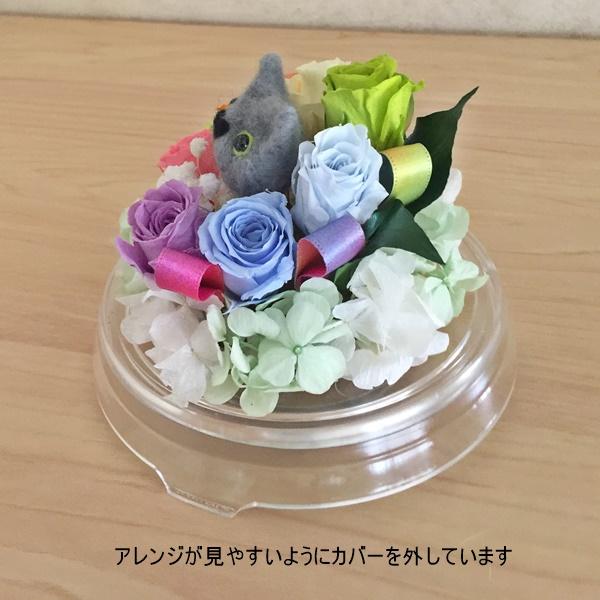 猫用お供え・ドーム虹花
